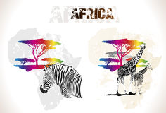 Mapa de África Fotos de Stock Royalty Free