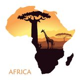 Mapa de África con el paisaje de la puesta del sol en la sabana, la jirafa, el baobab y el acacia Fondo del vector Foto de archivo