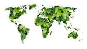 Mapa de mundo das folhas verdes Fotos de Stock Royalty Free