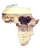 Mapa del concepto continente de África, safari en waterhole con los elefantes imagen de archivo