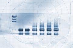 Mapa do gráfico de Biotech/medicina Fotografia de Stock Royalty Free