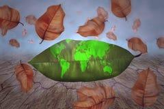 Mapa do mundo nas folhas verdes, conceito de salvaguarda da terra imagem de stock