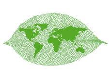 Mapa do mundo verde da folha, vetor Fotos de Stock