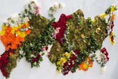 Mapa Rússia das flores Fotografia de Stock Royalty Free