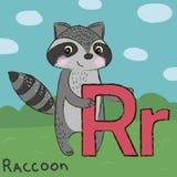 Mapache lindo con la letra R Imagen de archivo