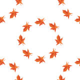Maple autumn falling leaves. Vector Stock Photography