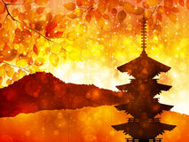 Maple autumn leaves Japan Royalty Free Stock Photo