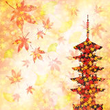 Maple autumn leaves Japan Royalty Free Stock Photography