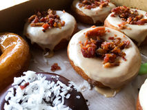 Maple Bacon Donuts. Fresh warm donuts with maple frosting and bacon on top Royalty Free Stock Photos
