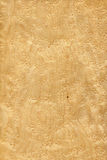 Maple bird's eye (wood texture) Royalty Free Stock Photos