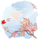 Maple branch. Sketch on watercolor background. Wind stripping leaves off the Maple branch. Stormy sky background. Autumn mood. Hand drawn sketch with watercolor Stock Image