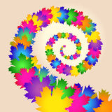 Maple colorful leaves swirl Stock Image
