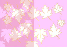Maple cut from stencil paper pink color and gold on white background,Vector illustration Stock Photography