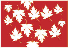Maple cut from stencil paper pink color and gold on white background,Vector illustration Stock Photo