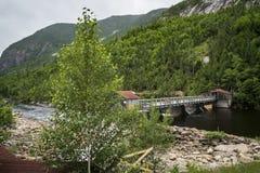 Maple dam Stock Images
