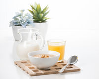 Maple Flavored Oatmeal Royalty Free Stock Photos