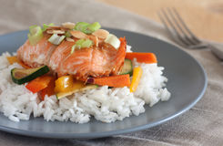 Maple glazed salmon Stock Photography