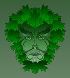 Maple Greenman Stock Photo