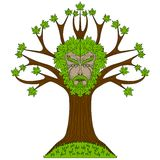 Maple Greenman in tree Royalty Free Stock Photography