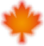 Maple-leaf Royalty Free Stock Photos