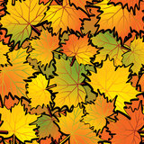 Maple leaf abstract background. Royalty Free Stock Images
