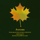 Maple leaf with abstract pattern for autumn design. Template for card, cover or invitation Royalty Free Stock Photos