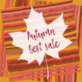 Maple leaf. Autumn best sale. Striped autumnal background. Maple leaf with autumn best sale on striped autumnal background. Season autumn discount. Hand drawn vector illustration