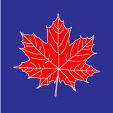 Maple leaf on blue backdrop. Element for your design project Stock Photos