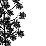 Maple leaf border Royalty Free Stock Photo