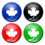 Maple leaf button Royalty Free Stock Image