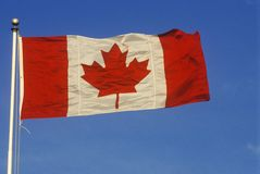 Maple Leaf Canadian Flag Stock Photography
