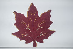 Maple Leaf. Canadian Maple Leaf on wall royalty free stock photography