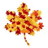 Maple leaf consisting of other leafs Stock Photography