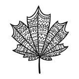 Maple leaf doodle Stock Photos