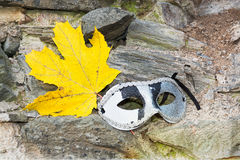 Maple Leaf with eye mask Stock Photography