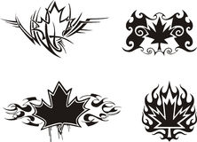 Maple Leaf Flames Stock Photos