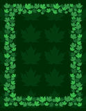 Maple Leaf Frame Border Royalty Free Stock Images