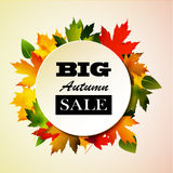 Maple leaf frame for seasonal sales Royalty Free Stock Photo