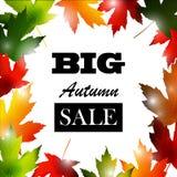 Maple leaf frame for seasonal sales Stock Image