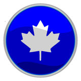 Maple leaf icon Royalty Free Stock Image
