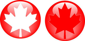 Maple leaf icons Stock Images