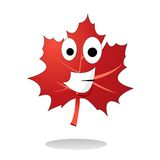 Maple leaf illustration vector Royalty Free Stock Photos