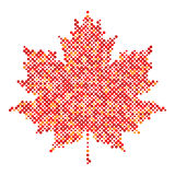 Maple leaf isolated dot abstract design symbol Royalty Free Stock Photo