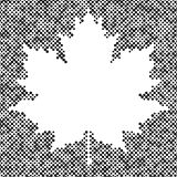 Maple leaf isolated halftone autumn background Stock Photo