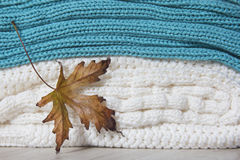 Maple leaf with knitted woolen sweaters Stock Images