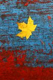 Maple leaf and old paint Royalty Free Stock Photos