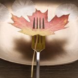 Maple leaf pierced by fork. royalty free stock photo
