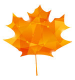 Maple leaf in poligon style Stock Image