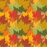 Maple leaf seamless background. Fall maple leaf seamless repeating background, preview shows four repeats Stock Photo