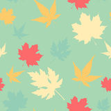 Maple leaf seamless pattern Royalty Free Stock Photo